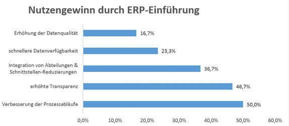 ERP Einführung Nutzen